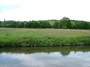 View of Parbold hill from the towpath