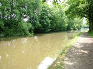 The canal at Arley Wood