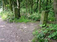 Old gateposts at Arley Wood