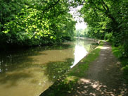 The canal close to Arley Hall