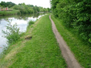 The towpath narrows to single file