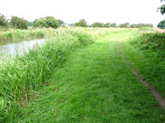 Wide grass towpath beyond the railway bridge