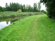 Another wide part of the grass towpath