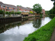 Modern housing on the canal bank
