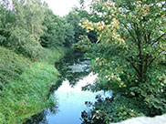 View from bridge on towpath
